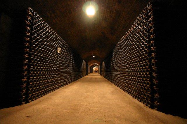 O dia está bom pra tomar uma Champagne com Napoleão na maior adega domundo